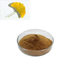 Ginkgo Biloba Extract Powder
